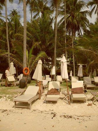 Kantary Bay, Phuket: Пляж