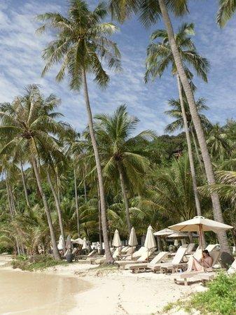 Kantary Bay, Phuket: На пляже