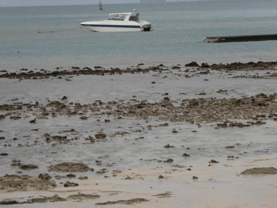 Kantary Bay, Phuket: Отлив