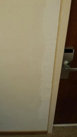 Amarilia Hotel: Hallway