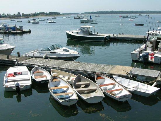 Fisherman's Friend: Stonington Harbor