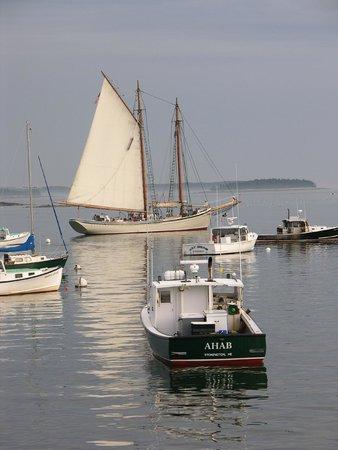 Fisherman's Friend: View from the Restaurant  Stonington Harbor
