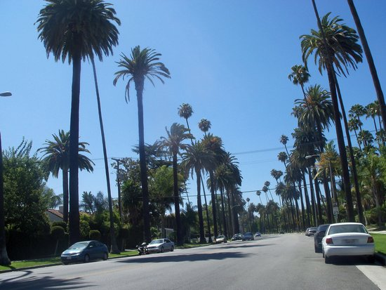 Starline Tours: Beverly Drive