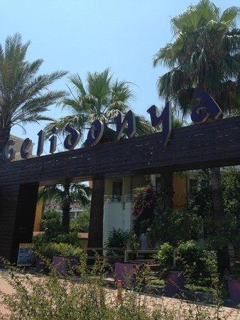 Novia Gelidonya Hotel : вход в отель