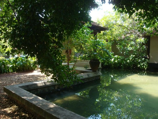 Saman Villas: Beautiful Ground