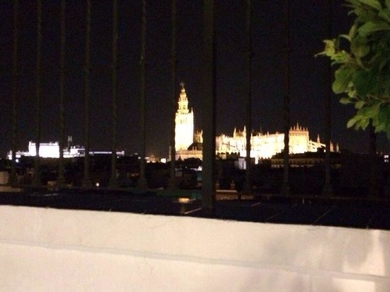Vincci La Rabida Hotel: Vista(que por foto no se aprecia del todo) desde el restaurante el Mirador de Sevilla