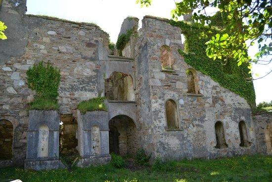 Clifden Castle : side of the castle