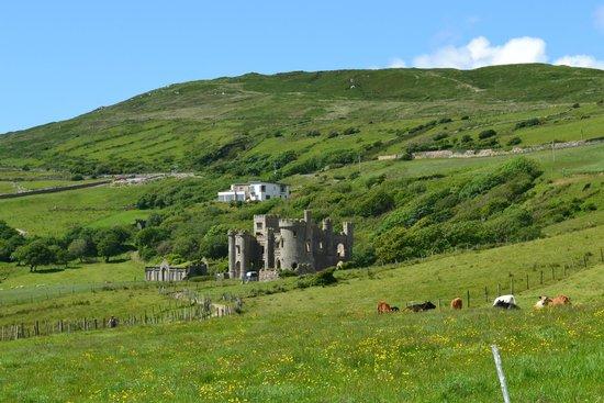 Clifden Castle ruins