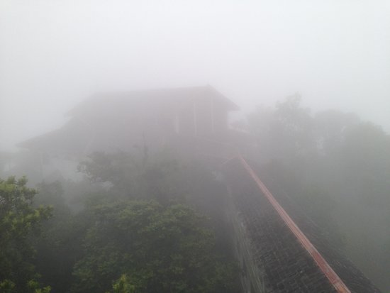 D'Coconut Hill Resort: Bridge to the rooms during a misty weather