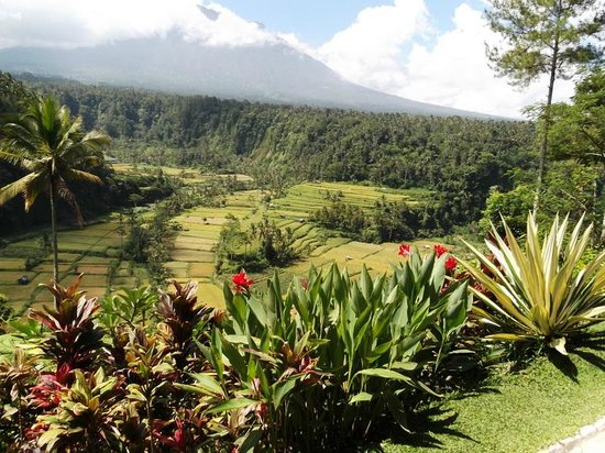 Lereng Agung : The view of Mt. Agung From Where I was seated