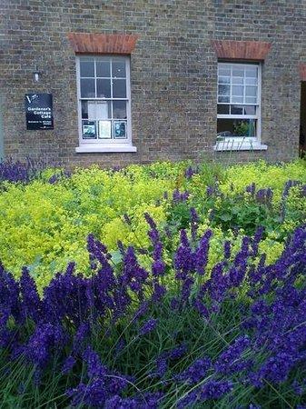 Gardener\'s Cottage Cafe, Valentines Park. - Picture of Gardener\'s ...
