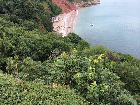 Babbacombe: Wonderful views