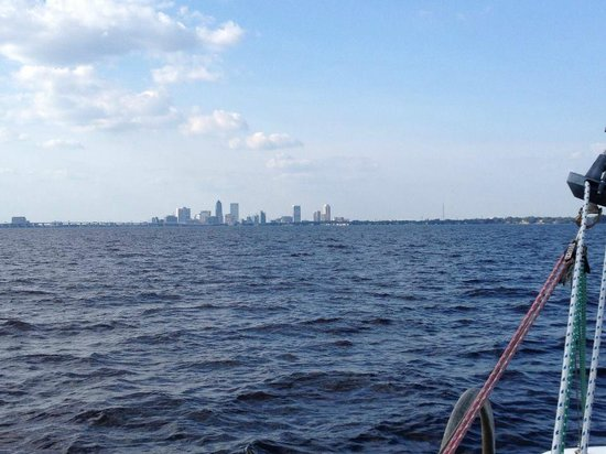 Now and Zen Sailing Charters: Now and Zen sailing in St. John's River...city skyline...JAX