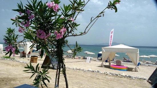 Sacallis Inn Beach Hotel: a tavola per il pranzo