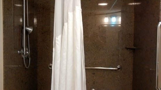 Holiday Inn Express & Suites Atlanta Downtown: The wonderful shower!