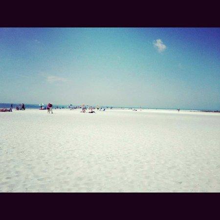 Siesta Beach: Siesta Key Beach!