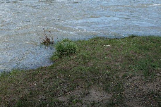 Animas River Trail: At the River Animas