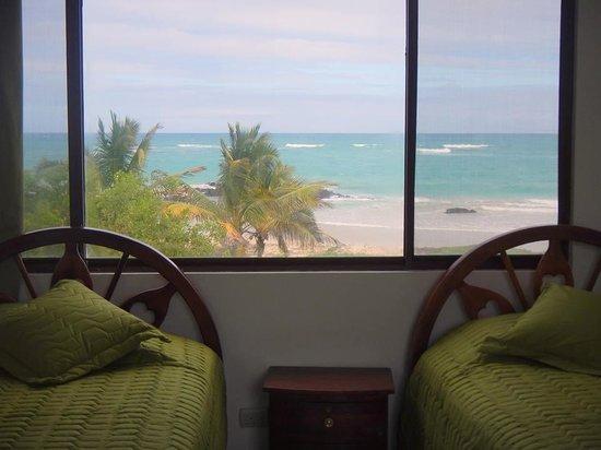 Hostal La Jungla: Vista desde mi habitación... en la Jungla