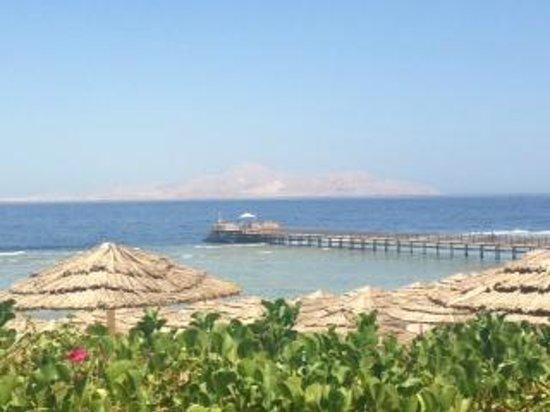 Cleopatra Luxury Resort Sharm El Sheikh : Beach & Jetty