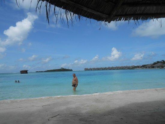 Cinnamon Dhonveli Maldives : EINMALIG - wunderschön, dort zu schwimmen