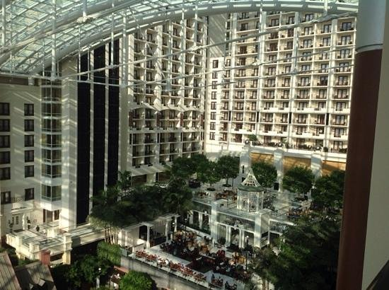 Gaylord National Resort & Convention Center: view from room