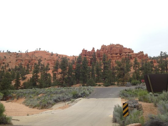 Red Canyon Campground