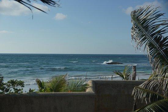 Zamas beach view