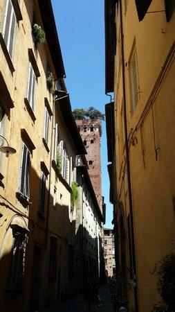 Lucca Tours : Башня с дубами в горде Лукка.