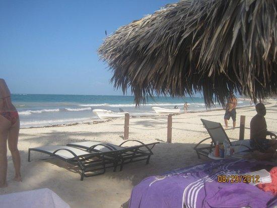 The Reserve at Paradisus Punta Cana: Camastros, sombrillas especiales, que mas, naturaleza!