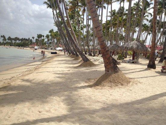 Grand Bahia Principe La Romana: Beautiful and well manicured beach area