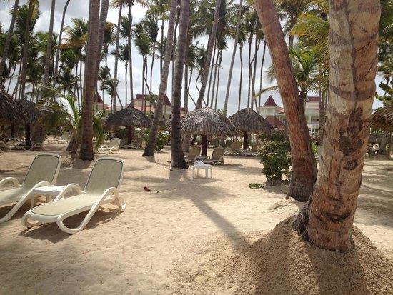 Grand Bahia Principe La Romana : Beautiful and well manicured beach area