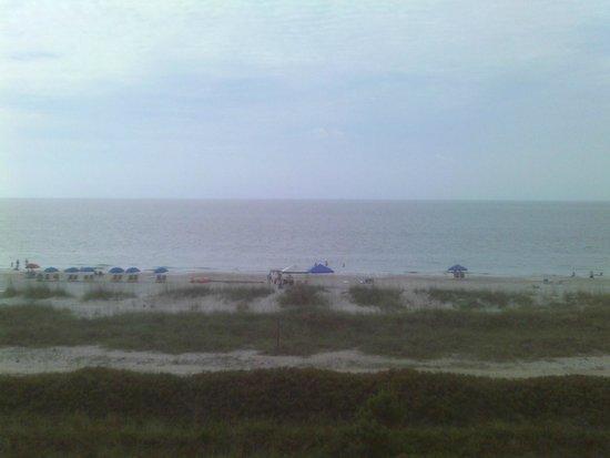 Seawatch at the Island Club: The beach