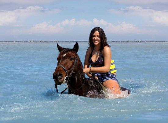 Horseback Ride Amp Swim At Chukka Sandy Bay Our Signature