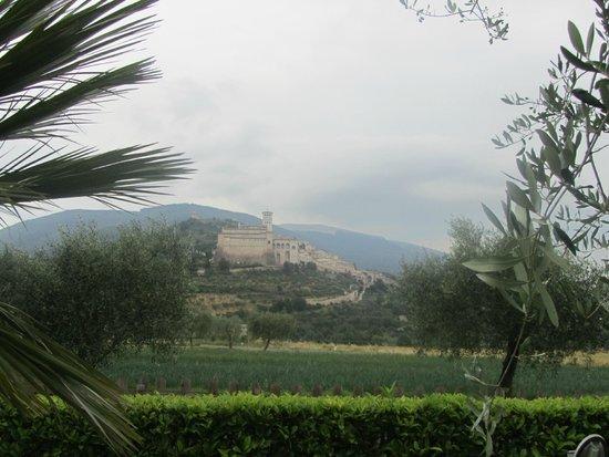 Agriturismo Il Girasole Assisi : veduta su Assisi