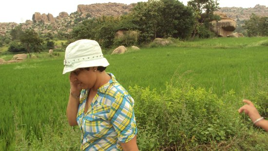 Shanthi Guesthouse: Fields