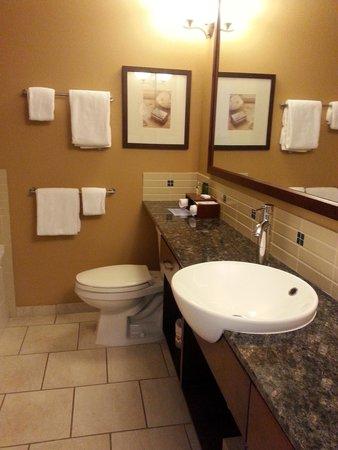Summerland Waterfront Resort & Spa : washroom