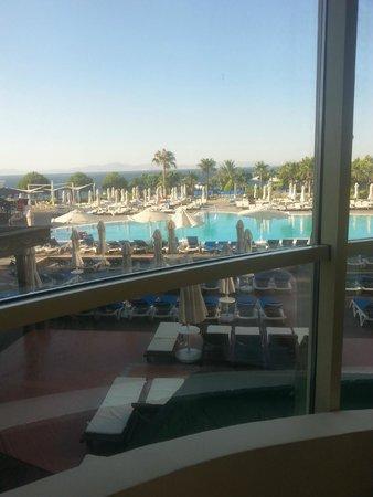 Didim Beach Resort & Spa : Dolphin pool