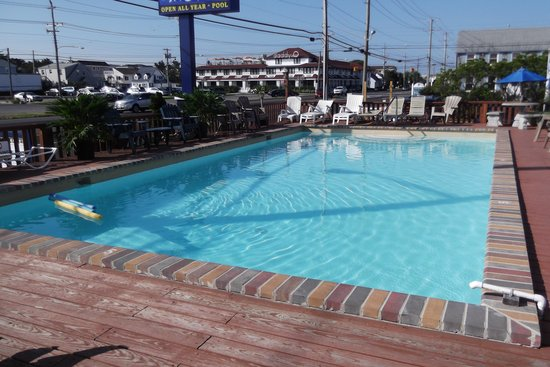 Sea Horse Motel: Relax by the Pool
