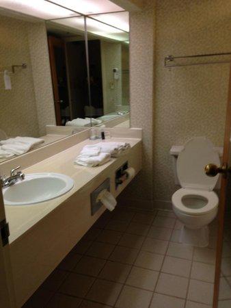 Embassy Suites by Hilton Williamsburg: Bathroom