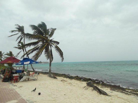Hotel Calypso : PARAISO DE  7 COLORES