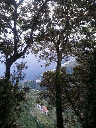 Nido Verde: Панорама