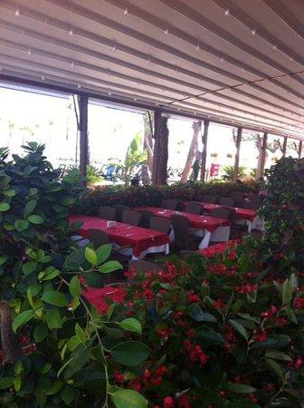 Nirvana Lagoon Villas Suites & Spa : Открытая веранда основного ресторана