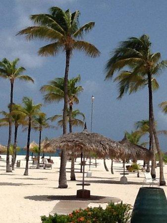 Manchebo Beach Resort & Spa: from room 17