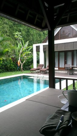 The Samaya Bali Ubud : From the gazebo - Pool and villa