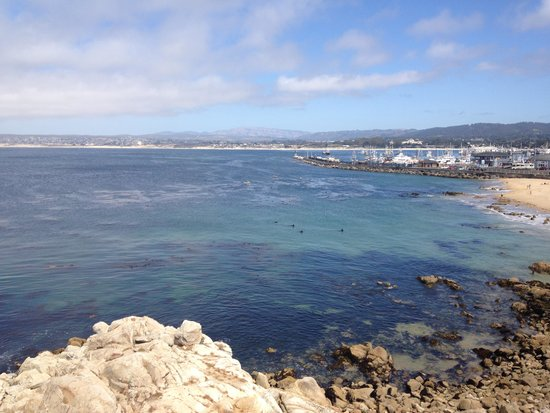 Monterey Bay Inn : view from Bedroom