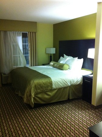 Best Western Plus Brunswick Inn & Suites: Room 229
