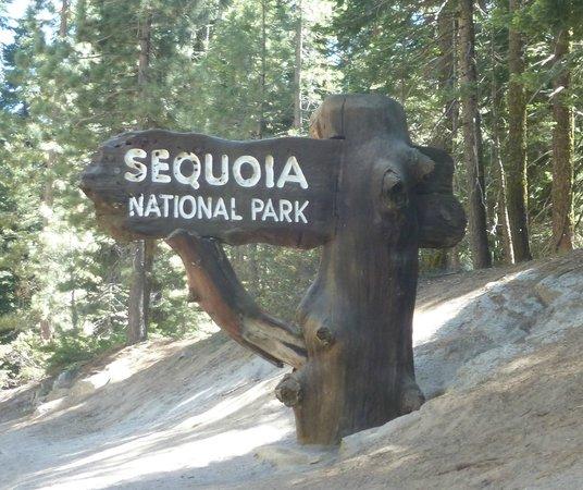 Wuksachi Lodge: Sequoia Nat'l Park