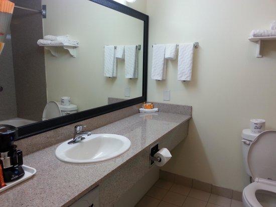 La Quinta Inn Vancouver Airport : washroom