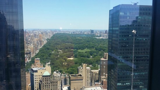 Residence Inn New York Manhattan/Central Park : North View to Central Park Below