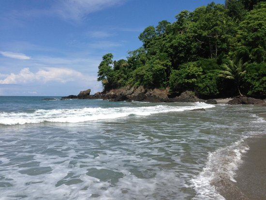 Arenas del Mar Beachfront & Rainforest Resort: The private beach...